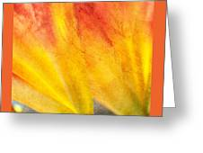 A Study In Red And Yellow Greeting Card