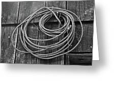 A Study Of Wire In Gray Greeting Card by Douglas Barnett