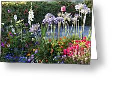 A Summer Garden Greeting Card
