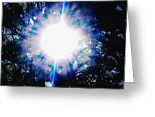 A Sun Burst Of Spring Time Greeting Card