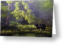 A Sunny Meadow Greeting Card