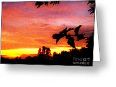 A Sunset With A Different Mood Greeting Card