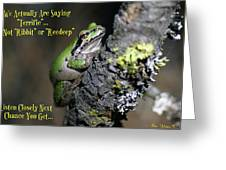 A Terrific Frog #2 Greeting Card