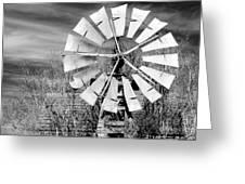 A Texas Windmill Greeting Card