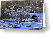A Time To Thaw Greeting Card