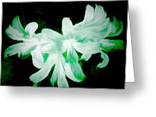 A Touch Of Green On The Lilies Greeting Card