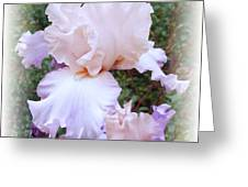 A Touch Of Lavender Greeting Card