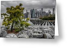 A Tree Grows In Brooklyn Looking At Manhattan Greeting Card