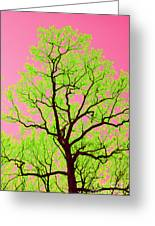 A Tree Grows In Vegas Greeting Card