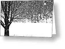 A Tree In Snowy Winter Greeting Card