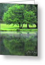 A Tree Reflected Greeting Card