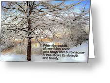 A Tree Shows Its Strength And Beauty Greeting Card