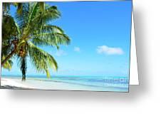 A Tropical Palm Tree Beach Greeting Card