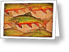 A Trout Lovers Dream Greeting Card by Terry Mulligan