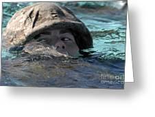 A U.s. Marine Swims Across A Training Greeting Card