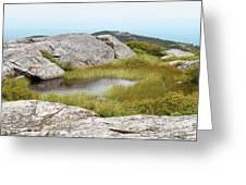 A Vernal Pool Atop A Subalpine Granite Balds Greeting Card