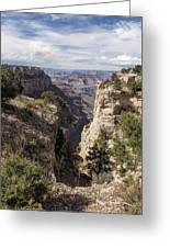 A Vertical View - Grand Canyon Greeting Card