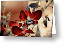 A Vibrant View Greeting Card