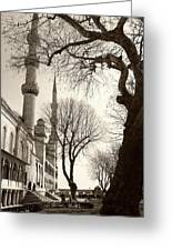 A View From Blue Mosque Greeting Card