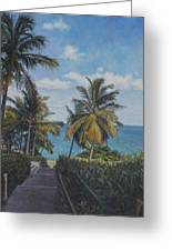 A View In The Virgin Islands Greeting Card