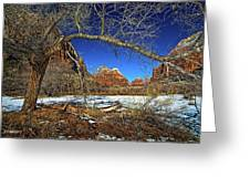 A View In Zion Greeting Card