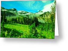 A View Into Paradise Greeting Card