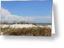 A View Of The Dunes Greeting Card