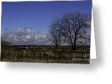 A View So Blue Greeting Card