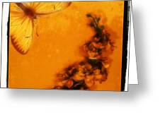 A Vintage Flower Butterfly Greeting Card
