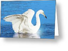 A Vision In White Greeting Card