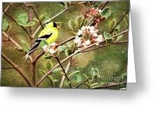 A Vision Of Spring Greeting Card
