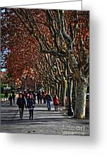 A Walk In The Park - Valencia Greeting Card