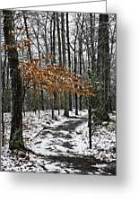 A Walk In The Snow Quantico National Cemetery Greeting Card