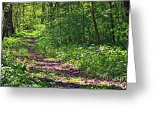 A Walk Through The Bluebells Greeting Card