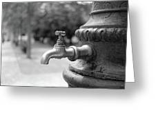 A Water Tap In The Park Greeting Card