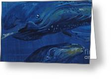 A Whale Of A Tail Greeting Card