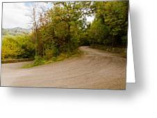 A Winding Road 2  Greeting Card