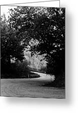 A Winding Road Bw Greeting Card