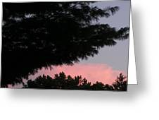 A Wing And A Glare Greeting Card