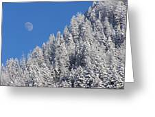A Winter Moon Greeting Card