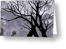 A Winter Night Silhouette Greeting Card