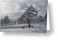A Winter Storm In Pagosa Greeting Card by Jason Coward