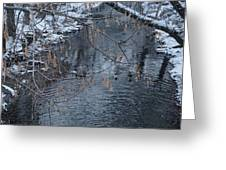 A Winter Swim Greeting Card