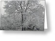A Winter Touch Greeting Card