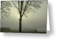 A Winter's Day In The Fog Greeting Card
