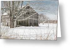 A Winters Day Square Greeting Card
