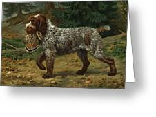 A Wire-haired Pointing Griffon Holds Greeting Card
