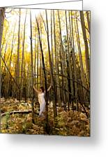 A Woman In The Aspen Greeting Card