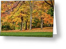 A Wonderful Walk In The Park Greeting Card