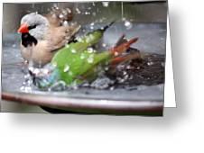 A Wondrous Bath Greeting Card